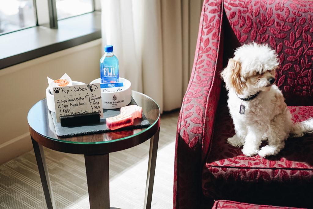 Four Seasons Denver Dog friendly hotel colorado