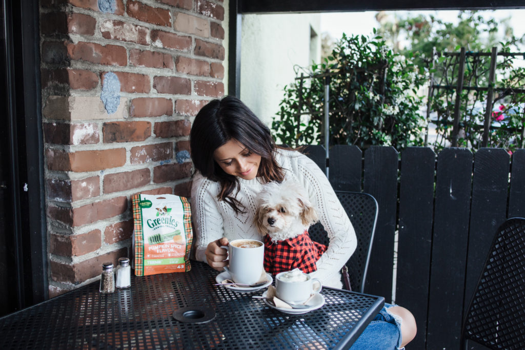 erin aschow and doug the dog - fall photoshoot drinking coffee outside