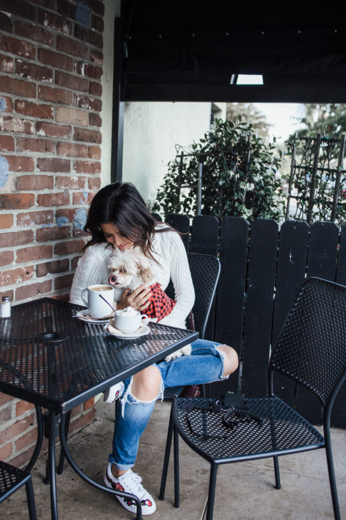 Erin Aschow - Pumpkin Spice - Fall Photoshoot - Fashion Blogger & Dog drinking coffee