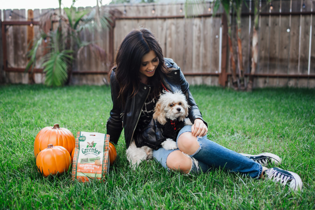 Erin Aschow Fashion Blogger & Doug the Dog -Fall Photoshoot matching leather jackets