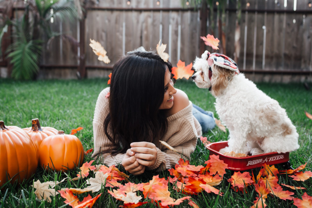 Erin Aschow fashion blogger fall photoshoot in leaves with dog in red wagon