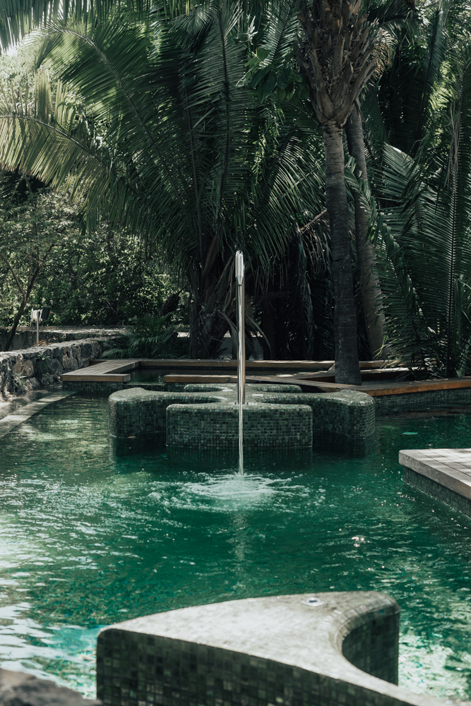 Erin Aschow Revenge Bakery Away Spa W Hotel Punta Mita swimming jungle
