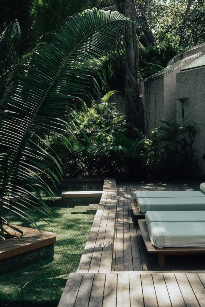 Erin Aschow Revenge Bakery Away Spa W Hotel Punta Mita jungle pool